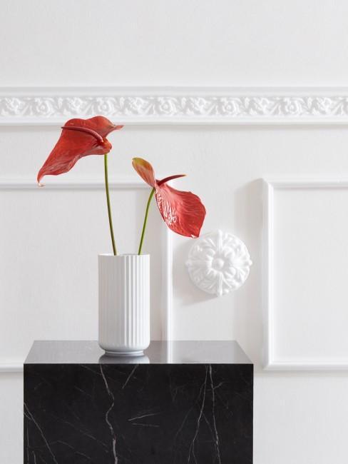 rote Flamingoblumen in weißer Vase