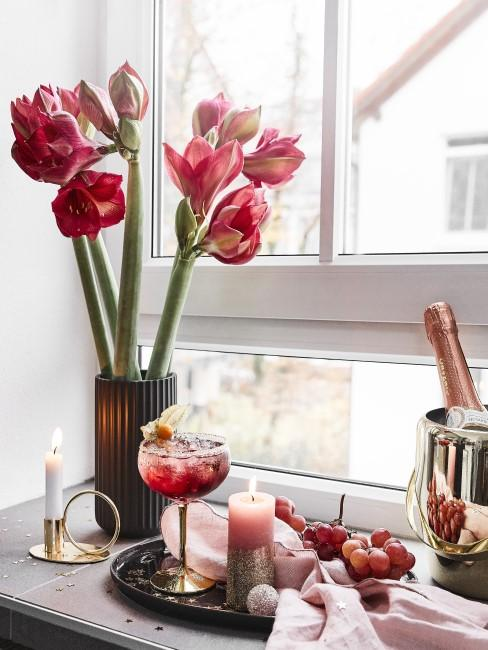 rote Amaryllis in Vase auf dem Fensterbrett