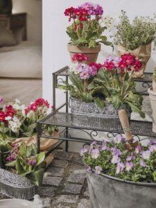 Schöne Gartengestaltung mit Blumen