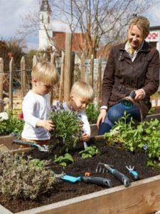 Gartengestaltung mit Beeten