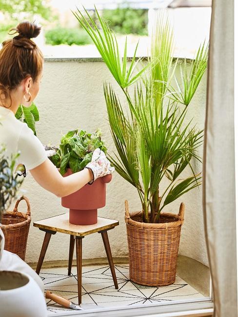 Frau kümmert sich um Pflanzen auf dem Balkon