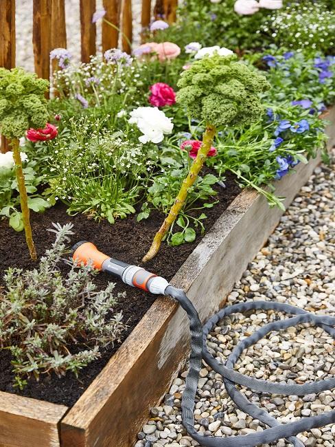 Gartenschlauch an einem kleinen Beet