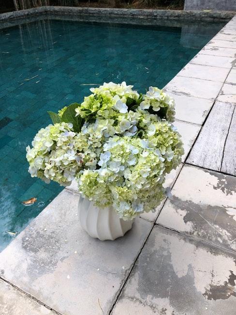 Blumenstrauß aus Rispenhortensien in Vase