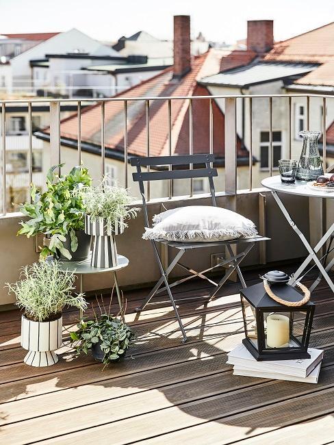 Verschieden Kräuter in Töpfen auf einem offenen sonnigen Balkon