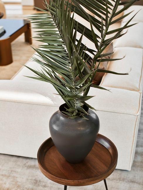 Palmenblatt in einer Vase