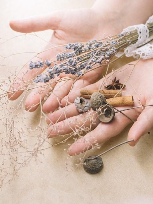 Deko Materialien für Lavendel Kranz