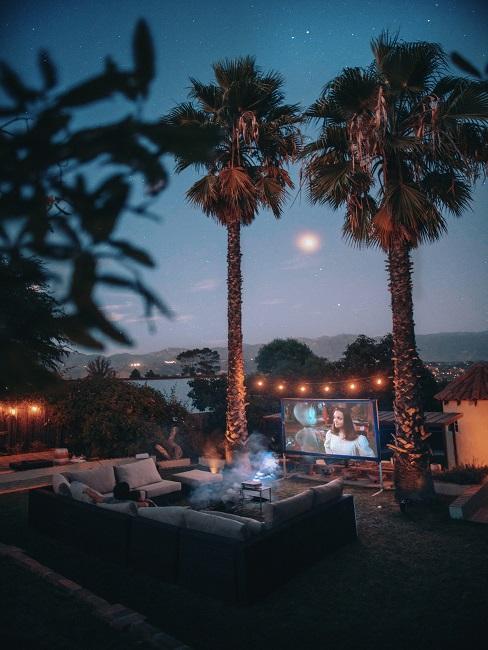 TV Abend unter Palmen