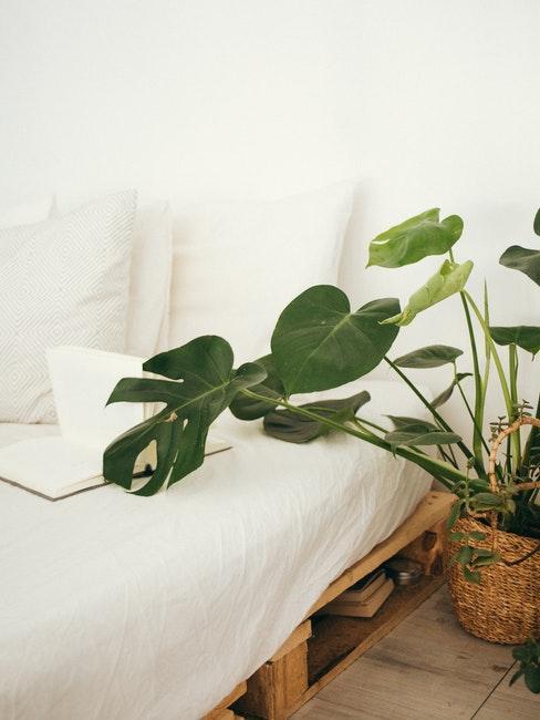 Bett selber bauen aus Paletten