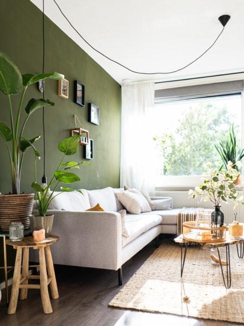 Grüne Wandfarbe im Wohnzimmer
