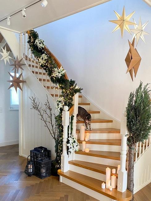 Treppe mit Kerzen, Weihnachtssternen und einer Katze