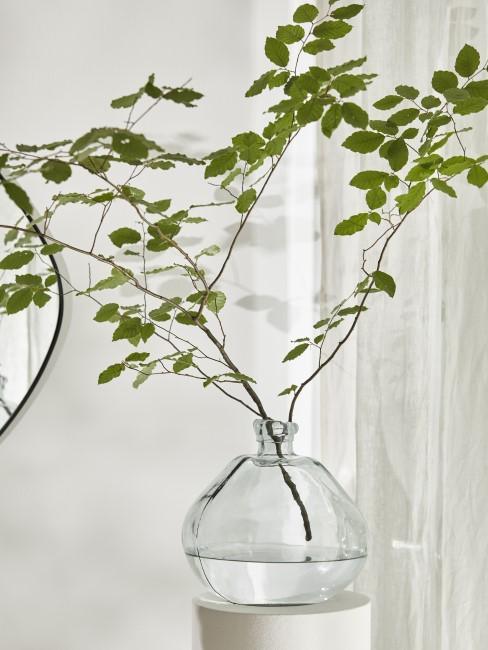 Cleane Vase für den puristischen Stil