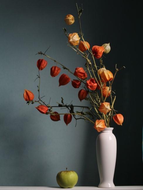 Herbstblumen Strauß aus Lampionblumen