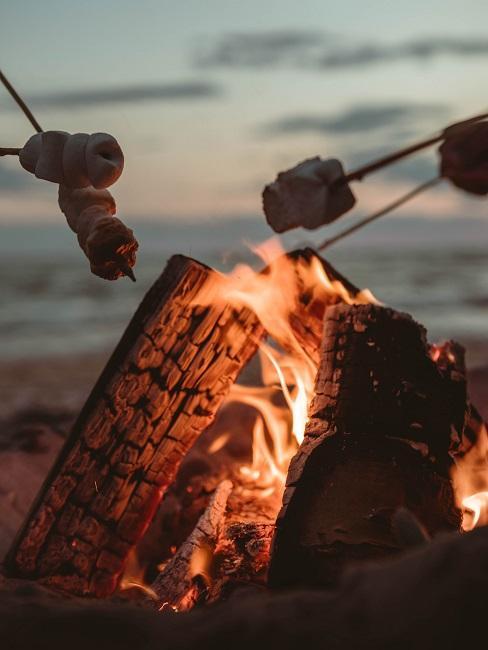 Lagerfeuer mit Marshmallows am Spieß