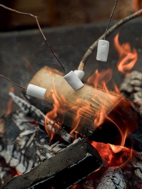 Feuer mit Marshmallows am Spieß