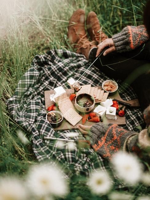 Picknickdecke mit Keksen, Erdbeeren und Marshmallows auf einem Brett