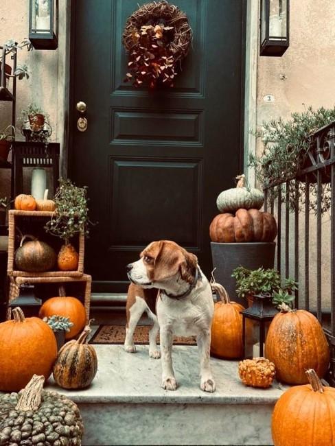Herbstdeko im Eingangsbereich