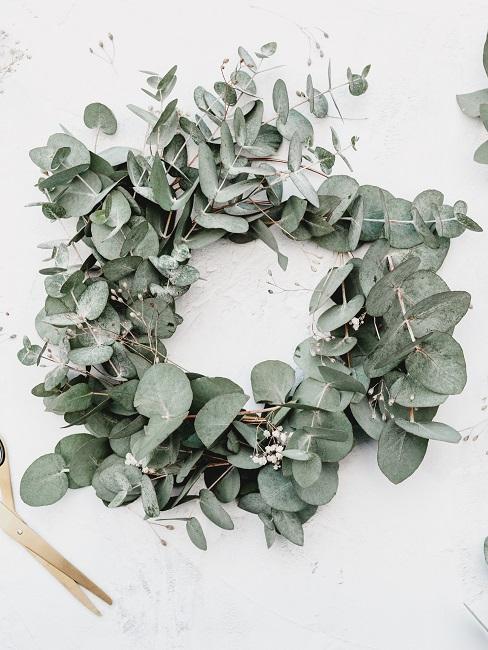 Eukalyptus Türkranz für den Sommer