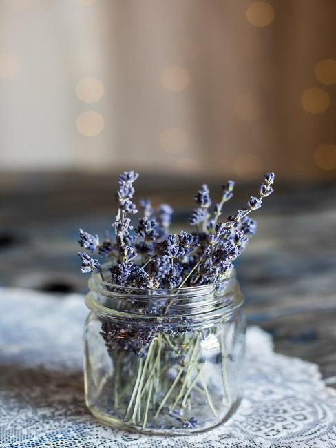 Lavendel im Glas