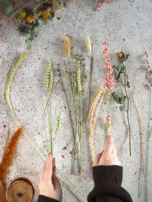 getrocknete Pflanzen für Herbstkranz