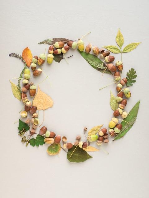 Blätter Eicheln als Material für Herbstkranz