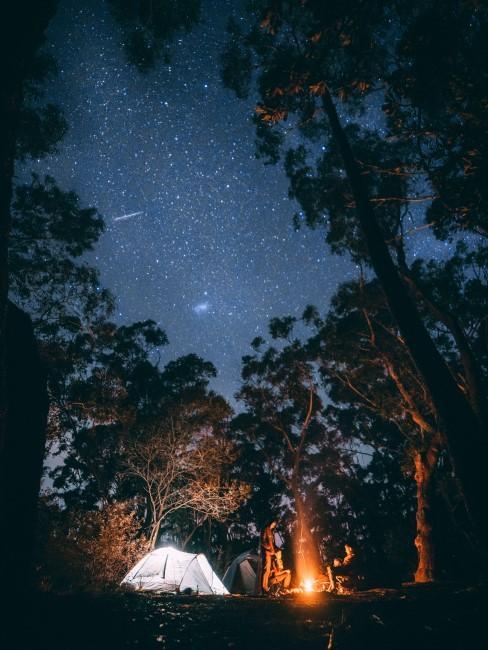Camping mit Kindern im Wald bei Nacht