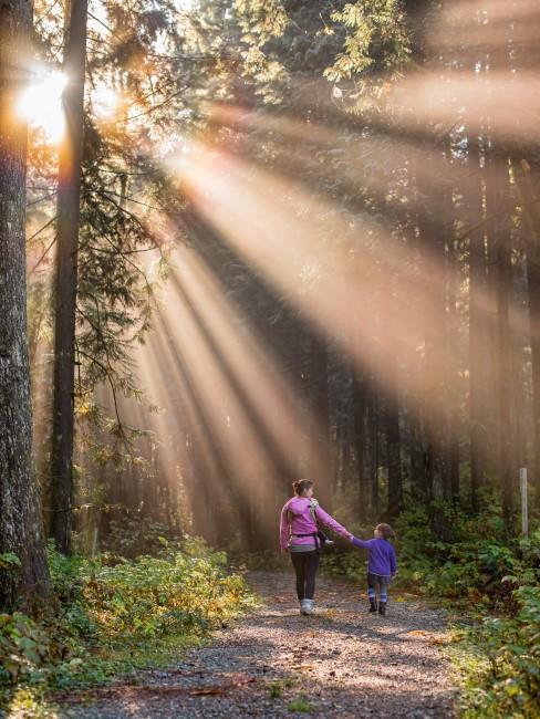 Mutter mit Kindern beim Waldspaziergang