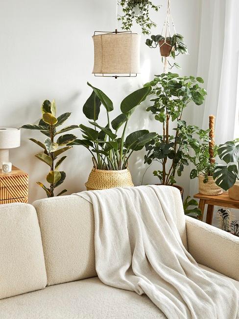 Wohnzimmer mit Pflanzen