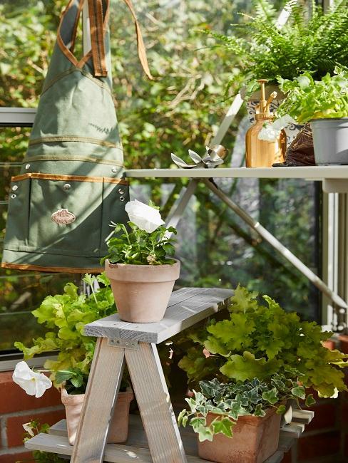 Pflanzentreppe mit verschiedenen Töpfen