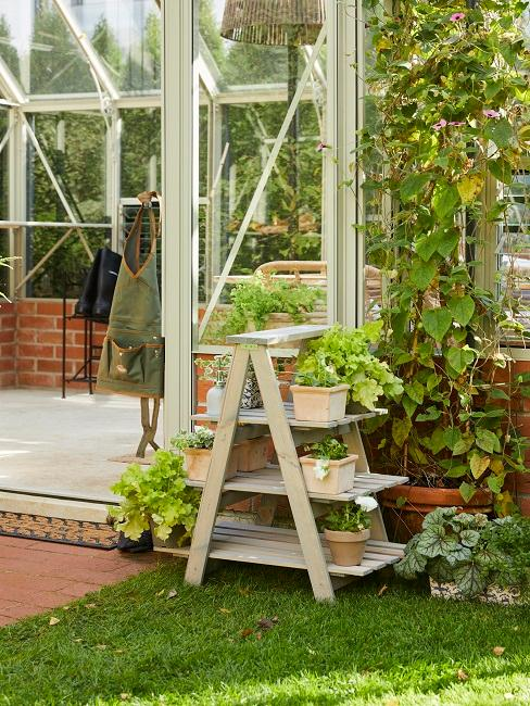 Gartenhaus mit vielen Pflanzen