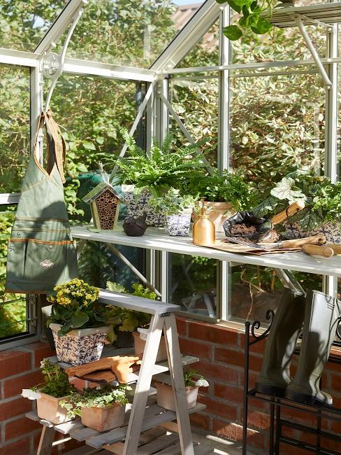 Pflanztisch mit vielen verschiedenen Arten an Pflanzen