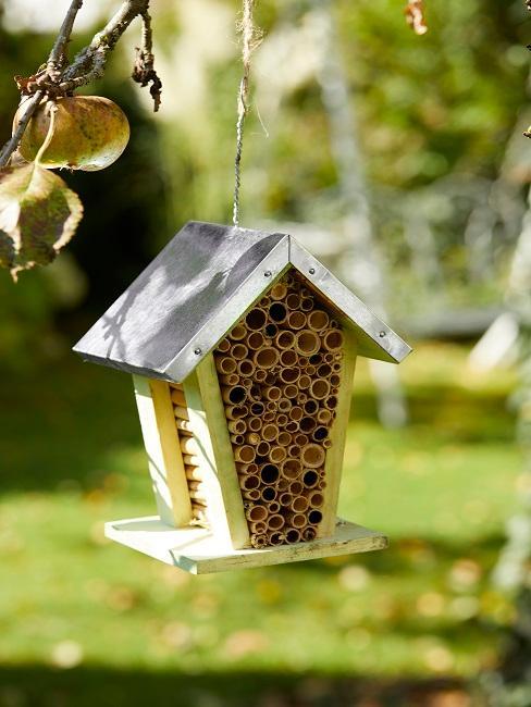 Kleines Vogelhaus