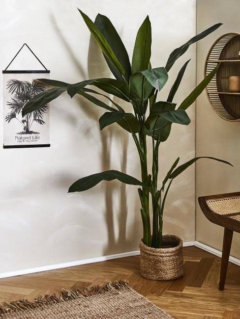 ricon con una planta y estilo oriental