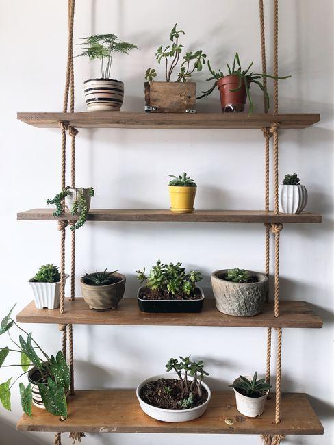 Estantería de madera y cuerda con plantas