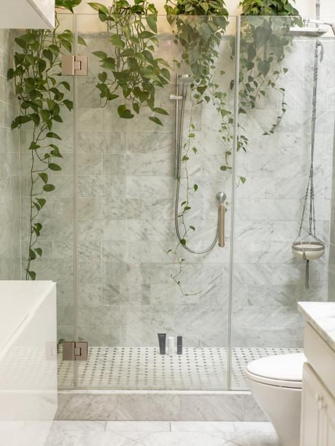 Cuarto de baño con ducha grande adornada por plantas de enredadera