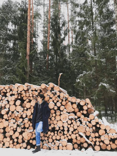 troncos de madera en un bosque de pinos con un chico