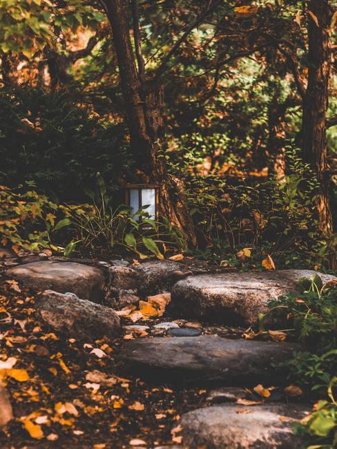 Jardín con piedras a modo de escalones y farol entre los árboles