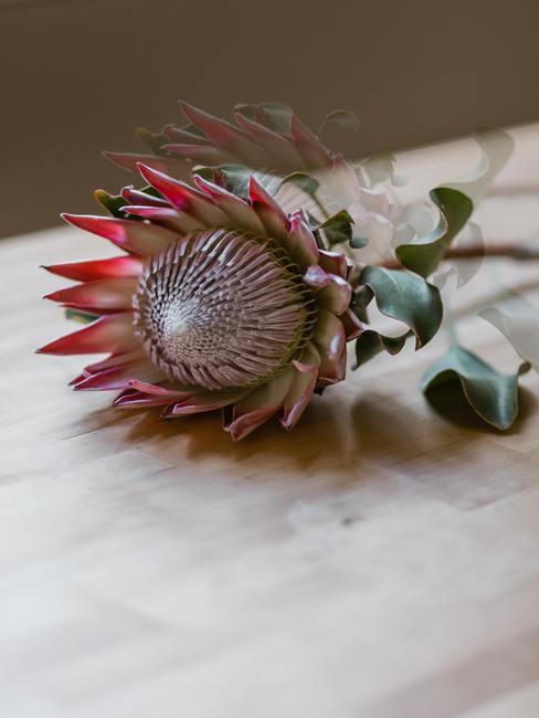 Flor sobre una mesa de madera
