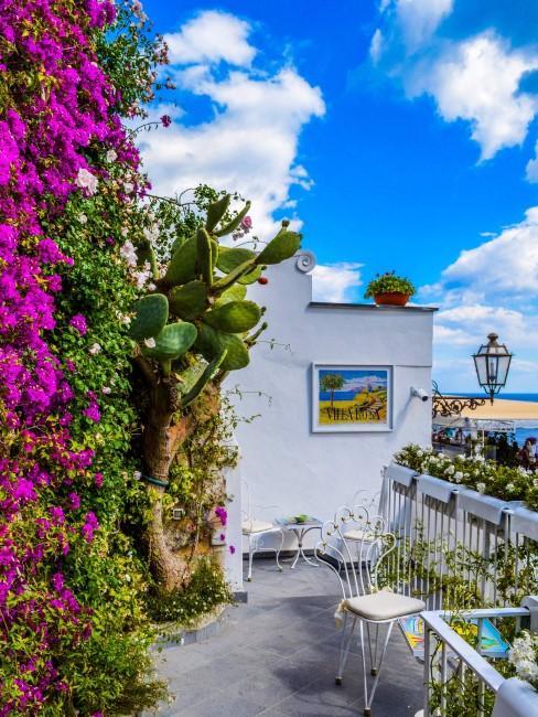 patio con mesa y flores
