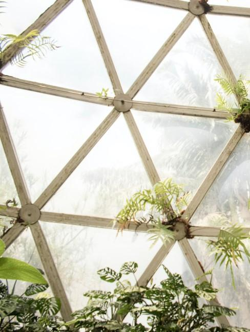 cristales para jardín