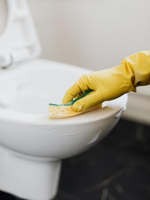 limpiando el wc