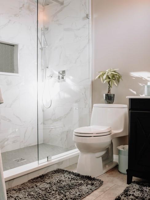 baño con planta sobre el wc