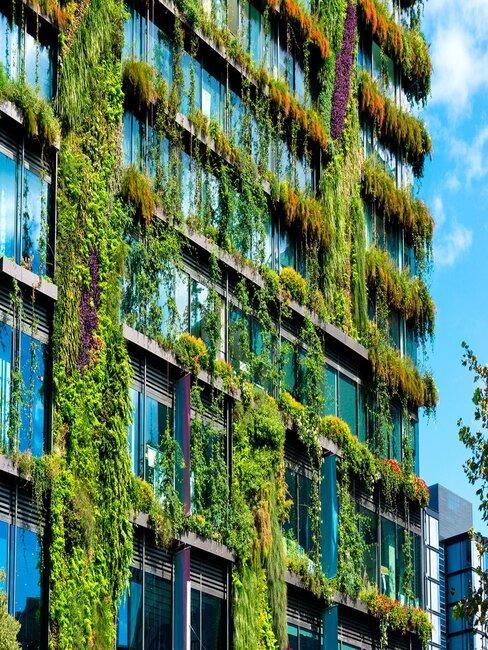 Edificio con hiedra y plantas en la fachada