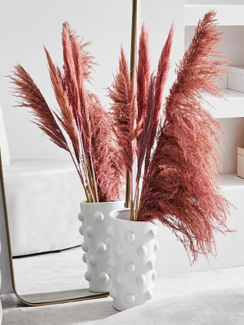 hierba de la pampa rosa con macetero blanco
