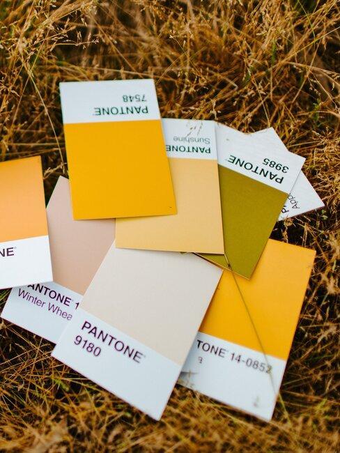 muestras de color de pantone