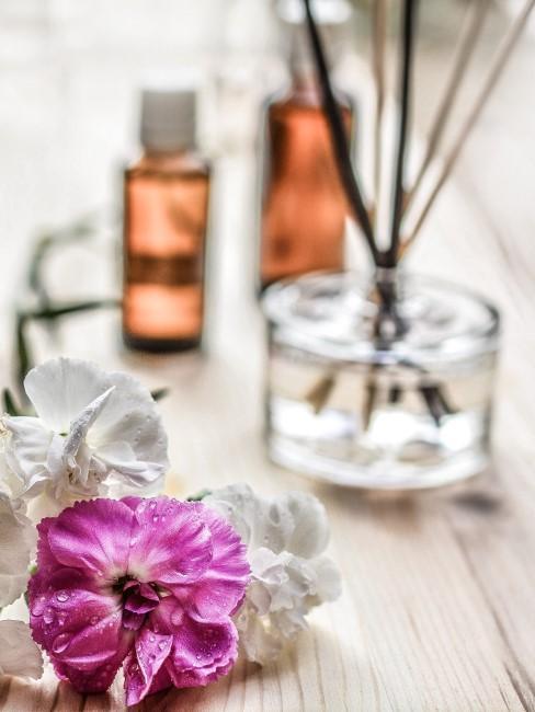 flores, ambientadores y fragancias para el hogar