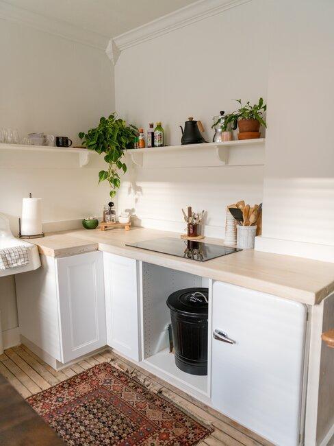 cocina pequeña blanca y madera con plantas