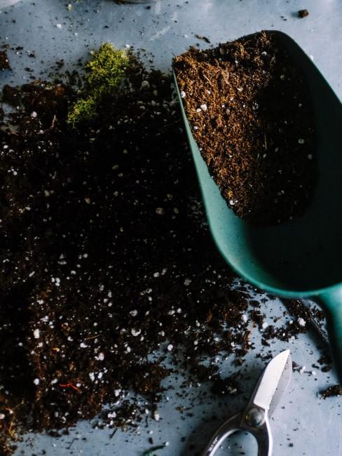 Pala con tierra para plantas