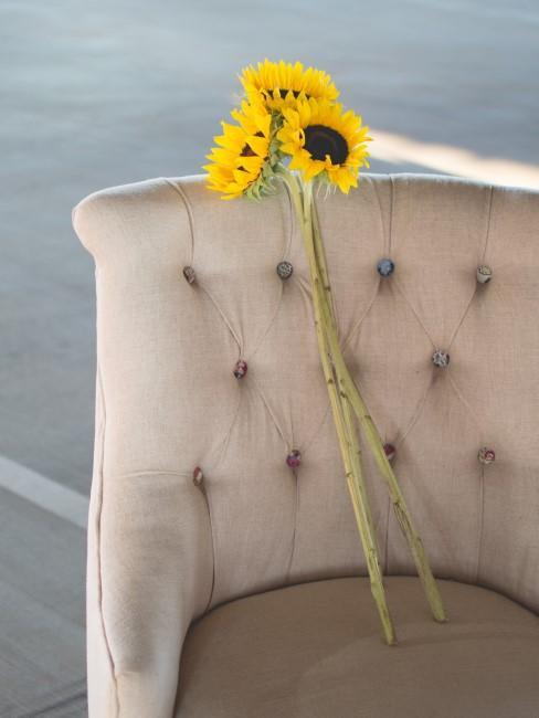 Girasoles sobre un sillón