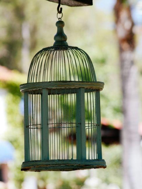 Jaula de pájaro reciclada