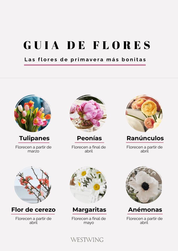 guia de flores de primavera